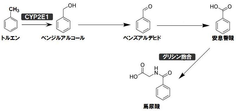 トルエンの酸化反応.jpg